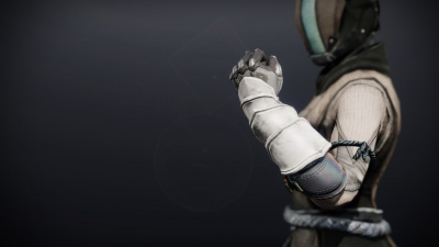Iron Will Gloves1.jpg